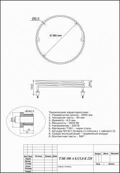 ТЭН 300 А 8,5-3,0 К 220 (2).jpg