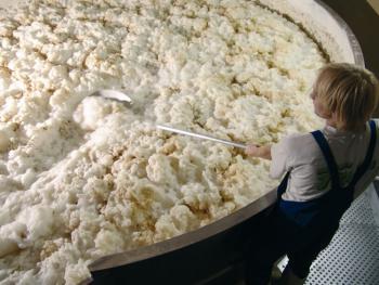 schneider-open-fermentation.jpg